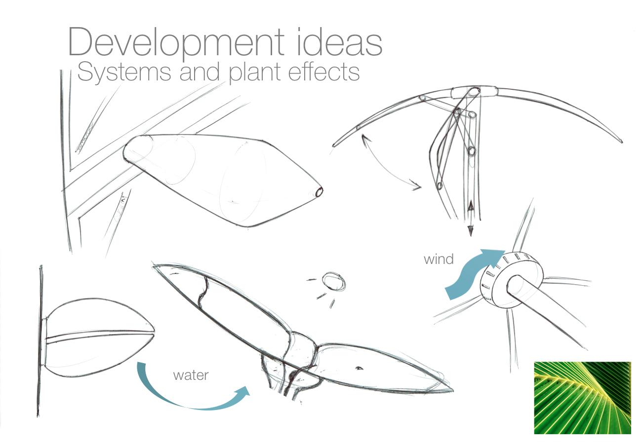 development biomimicry sketches